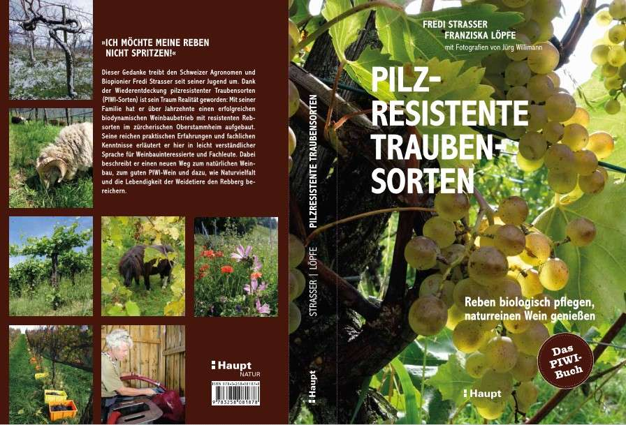 PIWI Book Strasser Cover